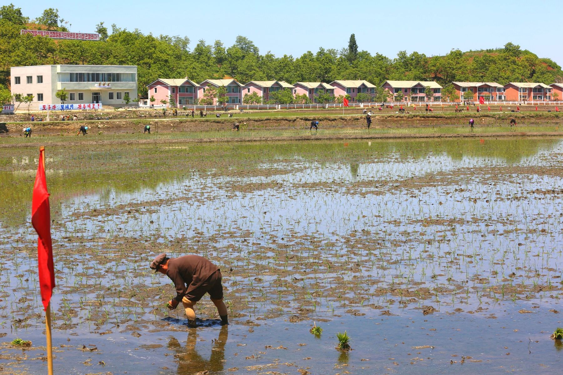 Chonsam Cooperative Farm in the outskirts of Wonsan City, North Korea (DPRK). Tour arranged by KTG Travel