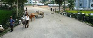 Cooperative agricole en Coree du Nord