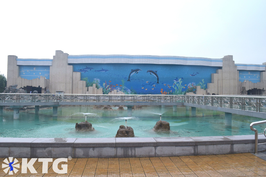 Dolphinarium at Pyongyang Zoo. The Korea central zoo is a great place to meet and interact with children. Discover the DPRK with KTG Tours