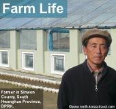 Farm in North Korea