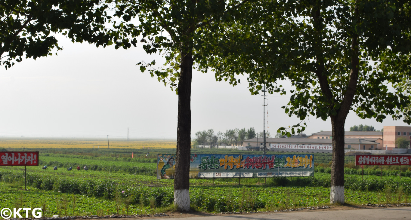 Migok farm in Sariwon, North Korea. KTG offers farm tours