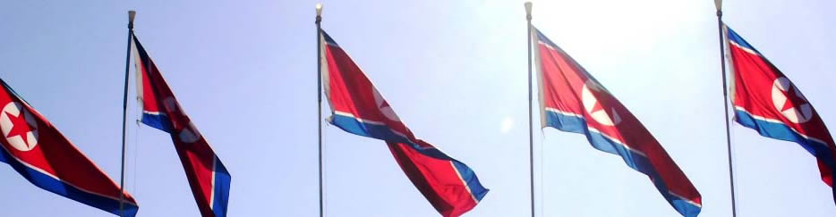 the north korean flag. North Korean Flags