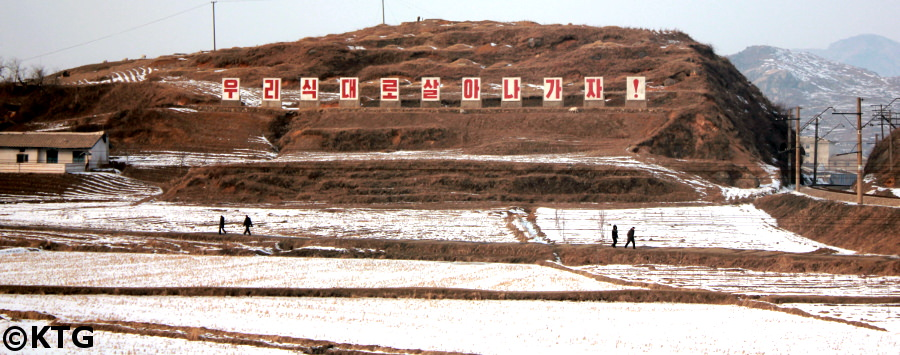 North Korean fields in winter