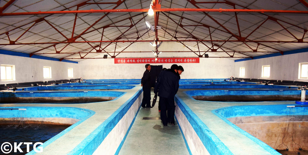 Fish farm in North Korea (DPRK). Discover North Korea with KTG