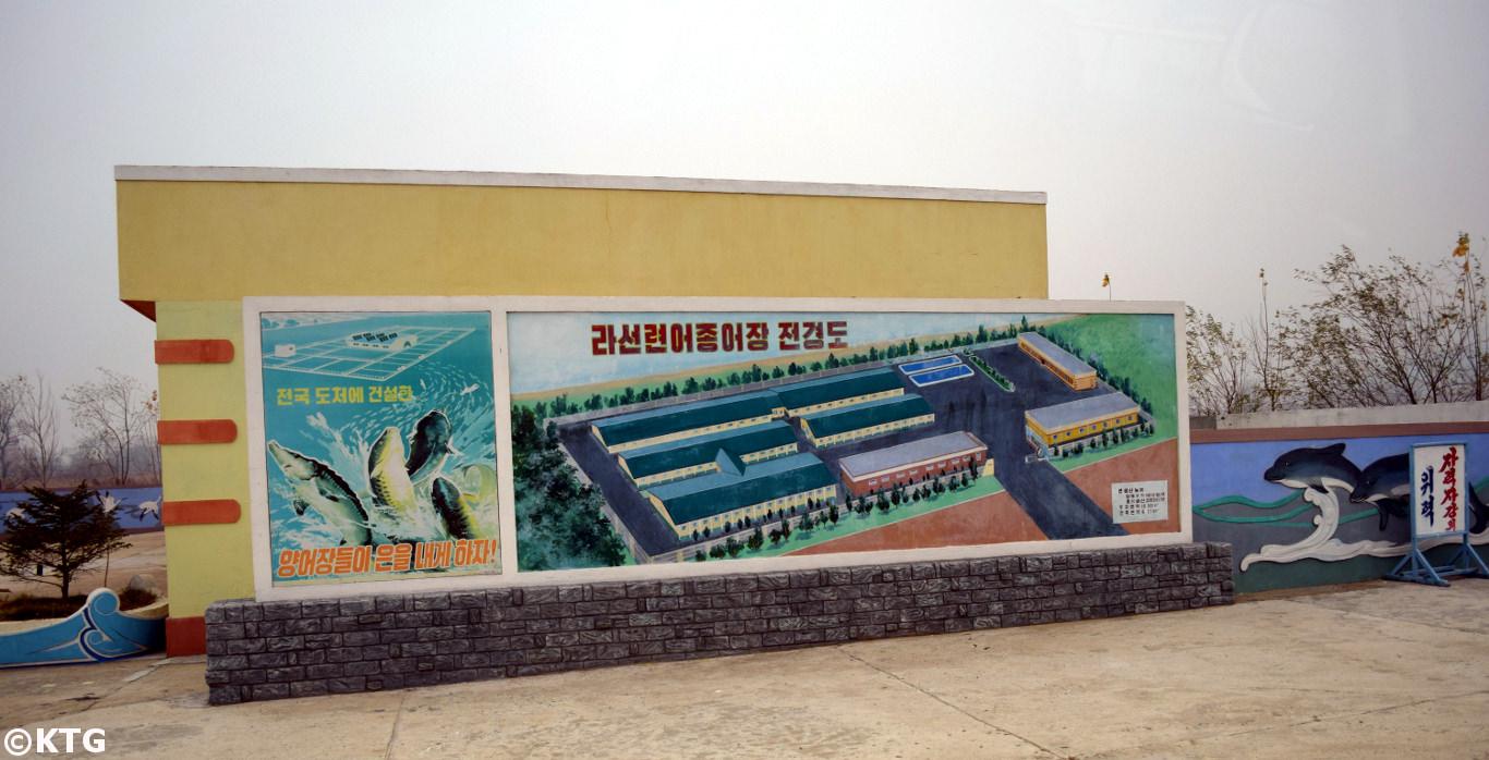 Piscifactoría en Rason en el norested de Corea del Norte (RPDC). Viaje organizado por KTG