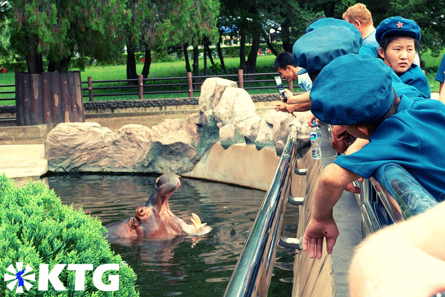 Los niños norcoreanos miran un hipopótamo en el zoológico de Pyongyang. El zoológico central de Corea es un gran lugar para conocer e interactuar con los niños. Descubra la RPDC con KTG Tours