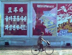 lief in north korea