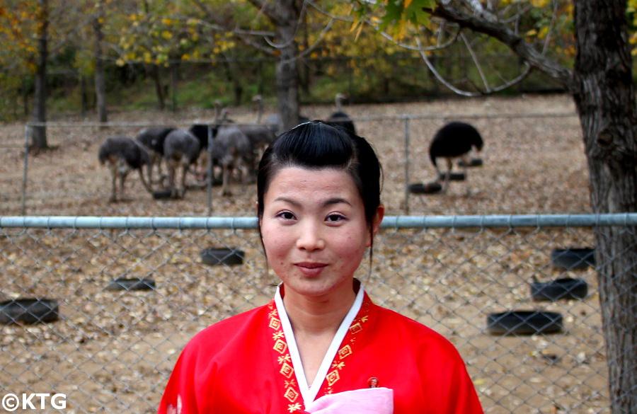 granja de avestruces en Corea del Norte