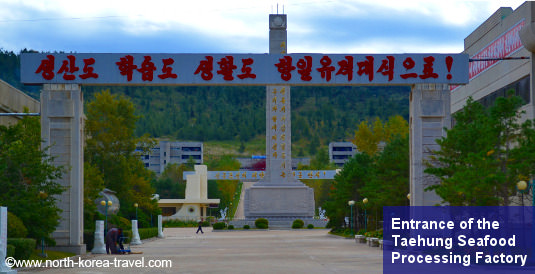 Taehung Seafood processing factory in Rason, DPRK (North Korea)